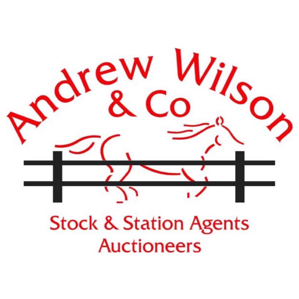 Andrew Wilson and Co Logo