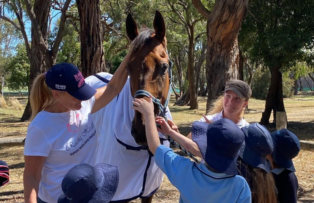 School group interacting with a horse during an Equine Assisted Therapy session