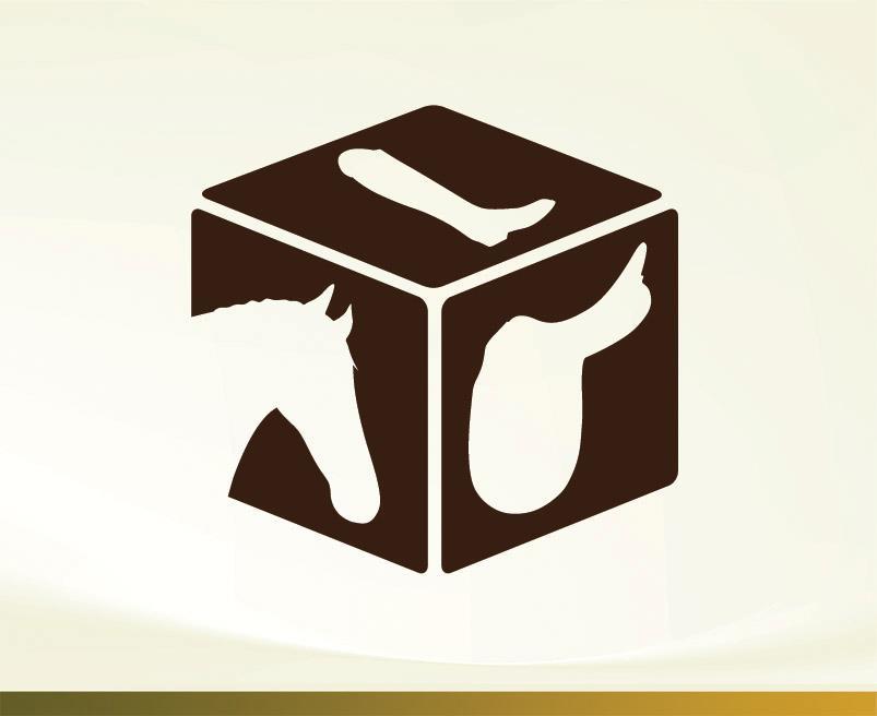 Tackbox Saddleworld Logo