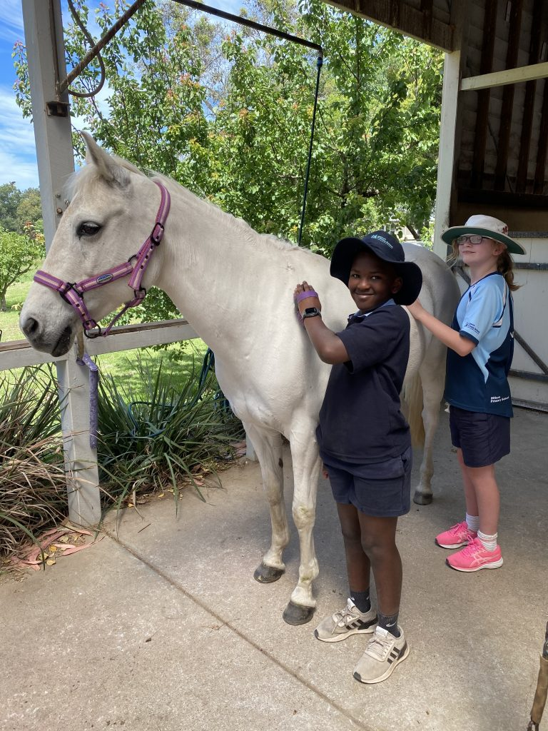 Katie the horse with kids