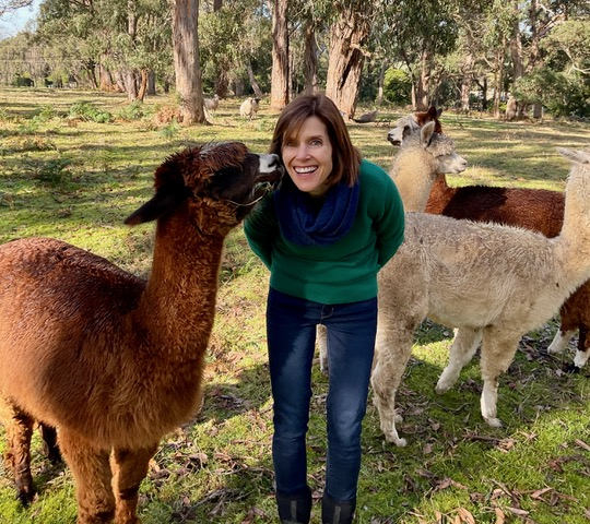 Vanessa Keating with alpacas